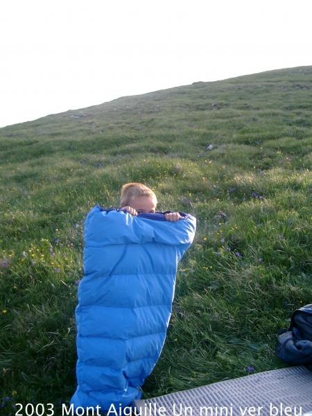 2003-mont-aiguille-un-mini-ver-bleu