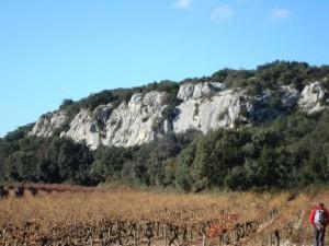Rochefort du Gard1